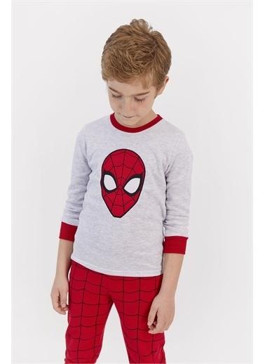Spider-Man Eşofman Takım Gri